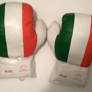 Flag Boxing Gloves Last Punch 16 oz U.S.A